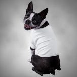Pet Clothing - Learn More